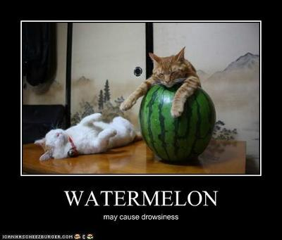 https://cdn0.desidime.com/attachments/photos/344624/medium/3249842funny-pictures-watermelon.jpg?1480999243