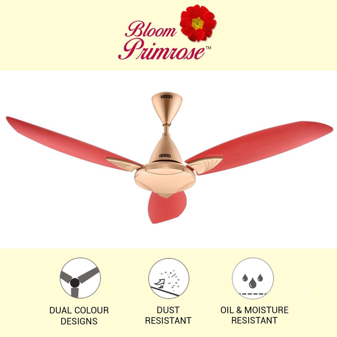 https://cdn0.desidime.com/attachments/photos/616976/original/bloom-primrose-ceiling-fan-1250-usha-original-imafkfhywknhwmhd.jpeg?1589515036