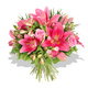 Pink lilies and roses  flowers