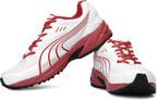 Mens Footwear : Minimum 50% off at Flipkart