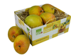 Devgadh Standard Alphonso 6 pc (Promo Pack) (Only for mumbai) (Minimum order value Rs.790)
