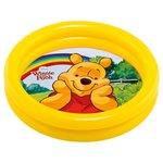 Disney Winnie The Pooh Babay Pool