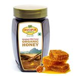 Dhampur Green Pure Organic Honey @ just Rs. 299