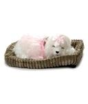 Perfect Petzzz Prima Dona Poodle, Multi Color@1421 MRP2999(53%off)