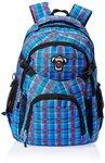 Safari Bags & Backpacks Upto 60% Off @Amazon