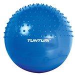 Tunturi Gym Ball Massage 65cm (Blue)@947 MRP1920(55%off)