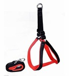 Upto 70% Off on Dogs Collars, Toys, Harnesses & more