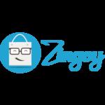 zingoy 50 cashback coupon on purchase of 100